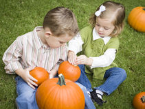 Cute Young Brother and Sister At the Pumpkin Patch Royalty Free Stock Image