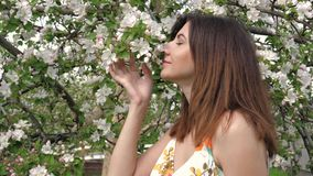 Cute young caucasian woman sniffs flowers of blooming apple trees in the garden. Young pretty Caucasian woman touching and sniffing the smell of flowers in a stock footage