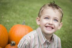 Cute Young Child Boy Enjoying the Pumpkin Patch. Royalty Free Stock Image