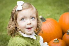 Cute Young Child Girl Enjoying the Pumpkin Patch. Stock Photos