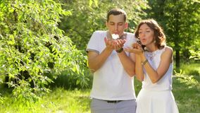 Cute Young Couple Blowing Dandelion Seeds Laughing Sunset Summer Field stock footage