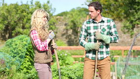Cute young couple gardening together stock footage