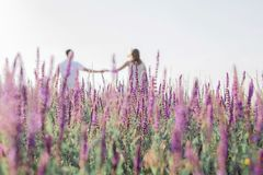 Cute young couple in love is holding their hands in a field of flowers. Love concept, romantic stock photography