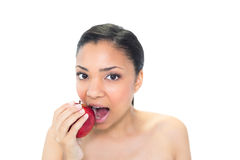 Cute young dark haired model eating a red apple Royalty Free Stock Photo