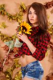 Cute young farmer girl holding the sunflower. At the background of maple leaves Stock Photos