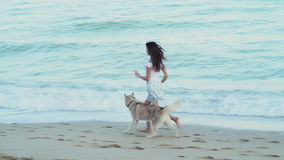 Cute young female playing with two husky dogs on the beach stock video footage
