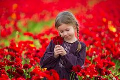 Cute young girl with a flower in her hand against the background of red flowers stock images