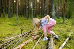 Cute young girl having fun during forest hike on beautiful summer day. Active family leisure. Cute young girl having fun during forest hike on beautiful summer royalty free stock photography