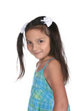 Cute young girl with long brown hair Stock Photos
