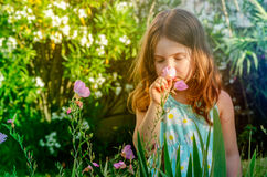 Cute Young Girl Smelling Flowers Royalty Free Stock Images