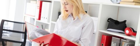 A young girl standing in the office and holding a folder. royalty free stock photo