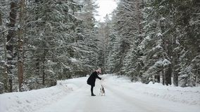 Cute young hipster woman having fun in winter park with their dog on a bright day and smiling. Girl playing with beagle. Slow motion, Winter forest. Long shot stock video