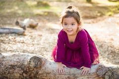 Playful Young Mixed Race Baby Girl Outdoors. Cute Young Mixed Race Baby Girl Playing on a Log Outdoors stock photo