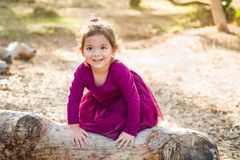 Cute Young Mixed Race Baby Girl Playing Outdoors. Cute Young Mixed Race Baby Girl Playing on a Log Outdoors stock image