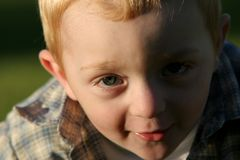 Cute young redheaded child. Cute, young redheaded boy curiously investigating the camera royalty free stock image