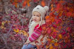 Cute young russian baby girl stylish dressed in warm white fur handmade jacket blue jeans boots and hooked hat teddy bear posing i. N autumn colorful forest Stock Images