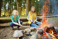 Cute young sisters roasting hotdogs on sticks at bonfire. Children having fun at camp fire. Camping with kids in fall forest. Family leisure with kids at stock photos