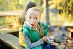 Cute young sisters roasting marshmallows on stick at bonfire. Children having fun at camp fire. Camping with children in fall. Forest. Family leisure with kids royalty free stock image