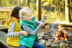 Cute young sisters roasting marshmallows on stick at bonfire. Children having fun at camp fire. Camping with children in fall. Forest. Family leisure with kids stock photography