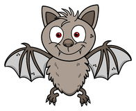 A cute young smiling bat Royalty Free Stock Images