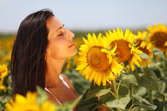 Cute young woman enjoying sunflowers. Beautiful girl posing in a field of sunflowers Stock Image