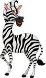 Cute zebra cartoon Stock Photo