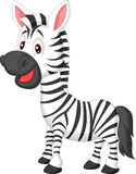 Cute zebra cartoon Royalty Free Stock Image