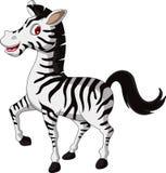 Cute zebra cartoon walking Royalty Free Stock Image