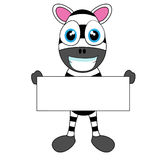 Cute Zebra holding blank sign Stock Photography