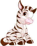 Cute Zebra Royalty Free Stock Photos
