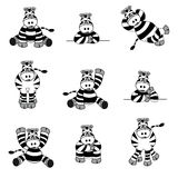 Cute Zebra Set Stock Photo