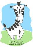 Cute Zebra. Vector illustration of an Zebra Stock Photos