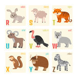 Cute zoo alphabet with animals in cartoon style. Rabbit, sheep, Royalty Free Stock Photos