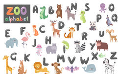 Cute zoo alphabet with cartoon animals isolated on white background and funny letters wildlife learn typography cute. Language vector illustration. Nature wild Stock Image