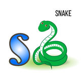 Cute Zoo alphabet S with cartoon snake, kid wild animal vector funny illustration isolated on background, Education for. Childrens, preschool, ABC poster for royalty free illustration