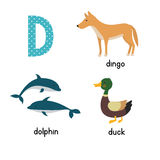 Cute zoo alphabet in vector.D letter. Funny cartoon animals: Dolphin, duck, dingo . Alphabet design in a colorful style Stock Photography