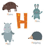 Cute zoo alphabet. Cute vector zoo alphabet. Funny cartoon animals: hyena, hare, hippo, hedgehog Stock Illustration