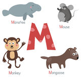 Cute zoo alphabet. Cute vector zoo alphabet. Funny cartoon animals: manatee, mouse, mongoose, monkey Royalty Free Stock Photo