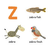 Cute zoo alphabet in .Z letter. Funny cartoon animals: zebra, zebrafish, zebrafinch. Alphabet design in a colorful style.  illustration for children Stock Image