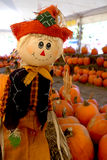 Cute_scarecrow Royalty Free Stock Photography