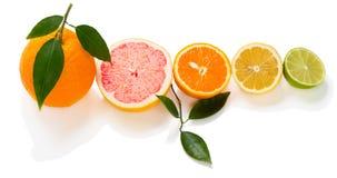 Cuted цитрусовых фруктов Стоковое Изображение RF