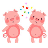 CutePigs Royalty Free Stock Photography