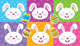 Cute Easter Bunny Faces Royalty Free Stock Photos