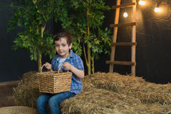 Cutest boy in blue shirt holding a basket and sitting on hay Royalty Free Stock Image