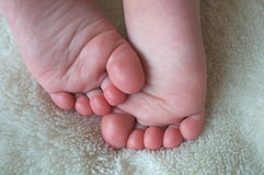Cutest feet Royalty Free Stock Images