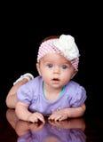 cutie черепашки Стоковое Фото
