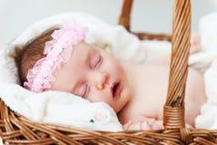 Cutie do sono. Fotos de Stock Royalty Free