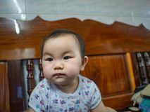 Cutie and Fat asian boy. Infant royalty free stock photos