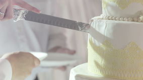 Cuting beautiful cake stock footage