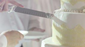 Cuting beautiful cake stock footage